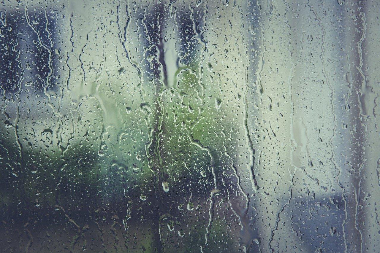 雨が降っている様子